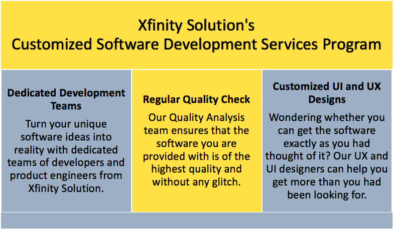 Customized Software Development Services Program